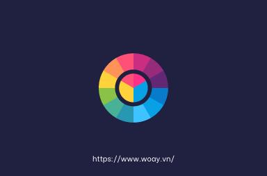 Đôi nét về Coolors.co và Color Palette